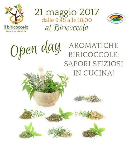 170521_Biricoccolo_Locandina_m